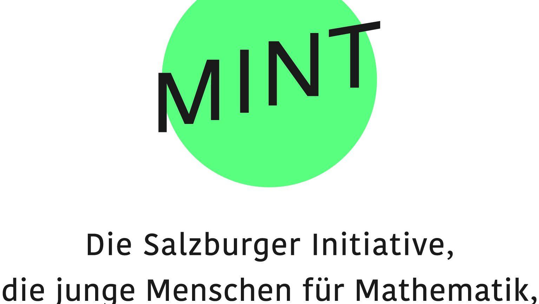 MINT_Logo_2018_Partner_lang_CMYK_v2